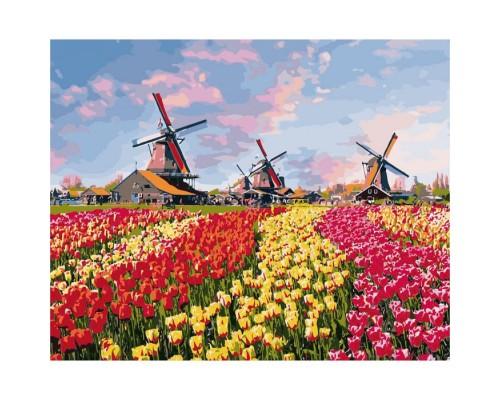"""Картина Сільський пейзаж """"Барвисті тюльпани Голландії"""" 40*50см KHO2224"""
