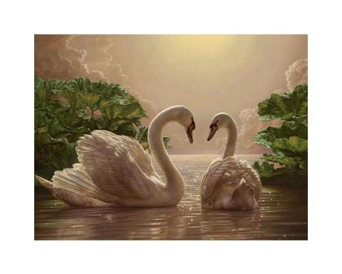 """Картина. Тварини, птахи """"Пара лебедів"""" 40*50см KHO301"""