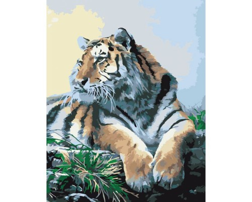 """Картина. Тварини, птахи """"Гордий тигр"""" 40х50см KHO2460"""