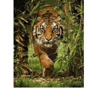 """Картина. Тварини, птахи """"Король джунглів"""" 40*50см KHO4043"""