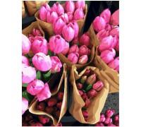 """Картина. Brushme """"Голландські тюльпани"""" GX7520"""