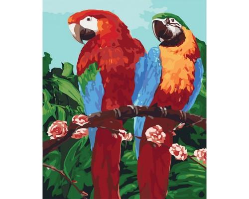 """Картина. Тварини, птахи """"Королівські папуги"""" 40*50см * KHO4051"""