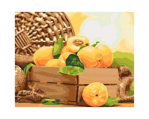 """Картина. """"Золотистий абрикос"""" 40*50см KHO5565"""