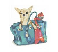 """Картина. Rosa """"Собачка в жіночій сумці"""" 35х45см N00013224"""