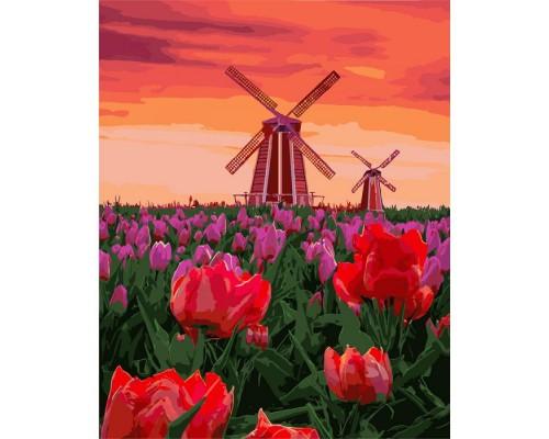 """Картина. Сільський пейзаж """"Тюльпани на заході"""" 40 * 50см KHO2275"""