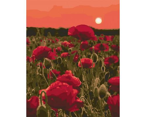 "Картина ""Макова поляна"" 40 * 50см KHO3579"