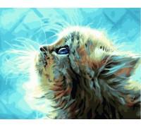"""Картина. Rainbow Art """"Пухнасте кошеня"""" GX22449-RA"""