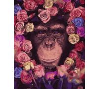 "Картина. Rainbow Art ""Шимпанзе"" GX36041-RA"