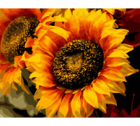 "Картина. Art Craft ""Шпигун сонця"" 40 * 50 см 13106-AC"