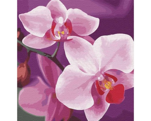 """Картина. """"Чарівна орхідея"""" 30 * 30см KHO3105"""