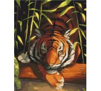 """Картина. Art Craft """"Бенгальський тигр"""" 40*50 см 11618-AC"""