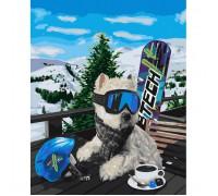 """Картина. """"Сноубордист"""" 40 * 50см KHO4171"""